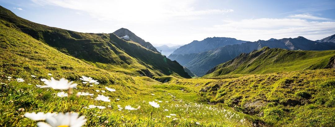 Blick in Richtung Alp Trider Sattel.