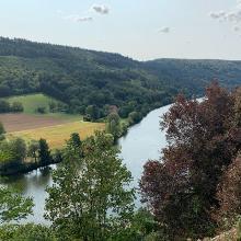 Aussicht von Burg Zwingenberg auf den Neckar