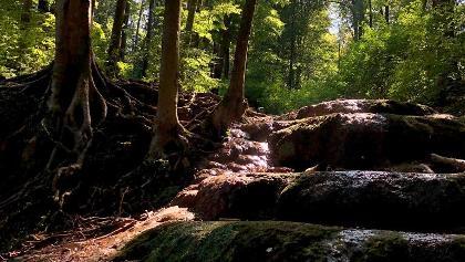 Melegmányi-völgy vízesése