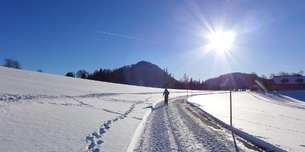 Zwischen Ausgangspunkt und Bauernhof Kaltenreiter