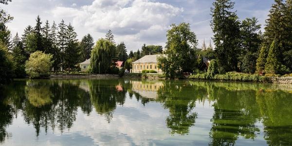 A Zirci Arborétum tava