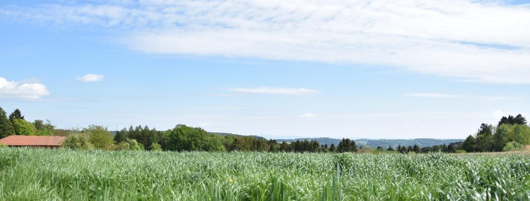 Landschaftliche Ausblicke in Fürstberg