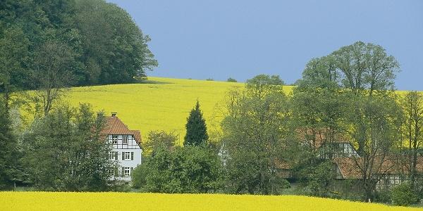 A4 - Wanderweg Holzhauser Berg