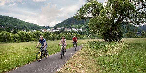Radweg im Nahetal bei Frauenberg