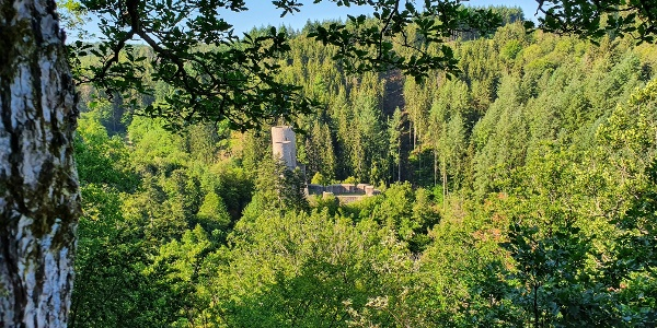 Frauenburg bei Frauenberg am Burgen-Radweg
