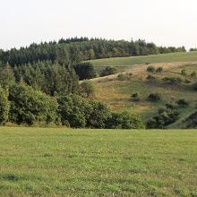 Landschaft bei Philippsweiler