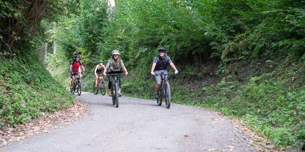 Mountainbiker im Weitenteal