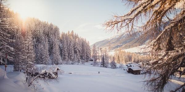 Snowy winter landscape in the mountain village of Reckingen