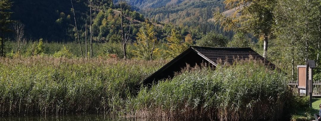Die Berge des Toten Gebirges spiegeln sich im Almsee.
