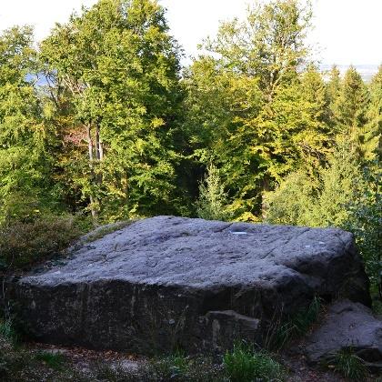 Opferstein an der Gertrudskammer