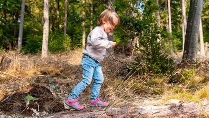 Balancieren auf einem Baumstamm, Märchenspur