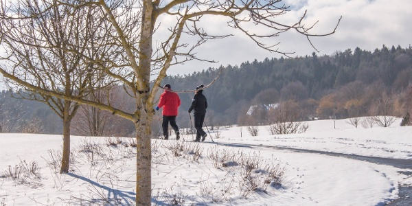 Winterwanderung in der 2-Thermenregion Bad Waltersdorf