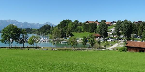 Seeufer - Rieden am Forggensee