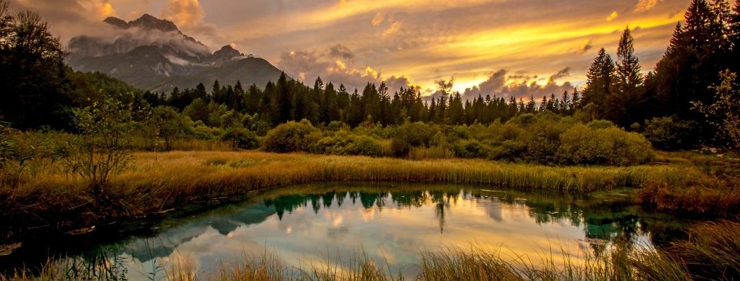 Zelenci, Kranjska Gora
