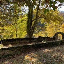 Waldfriedhof Familie Laubscher