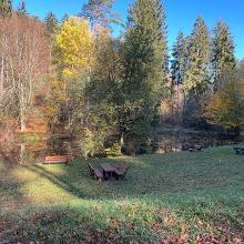 Morschbacher Weiher (groß)