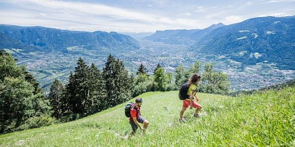 Merano High Mountain Trail - Talbauer