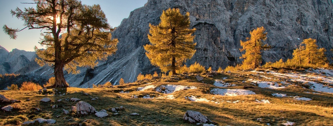 Kranjska Gora, Sleme