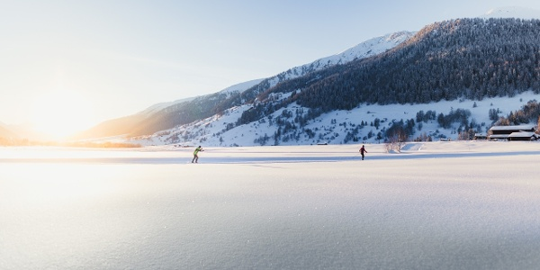 Cross-country skiing in the warm evening light