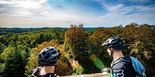 Blick vom Eschkopfturm Tour 1 Rodalben