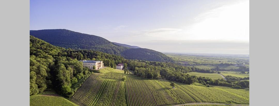 Luftaufnahme Villa Ludwigshöhe