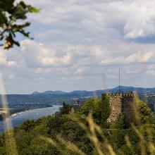 Die Burg Rheineck.