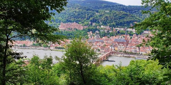 Das Bild zeigt die Landschaft/Altstadt, die Sie durchwandern