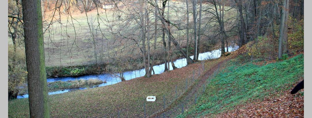 Waldweg entlang der Kleinen Striegis