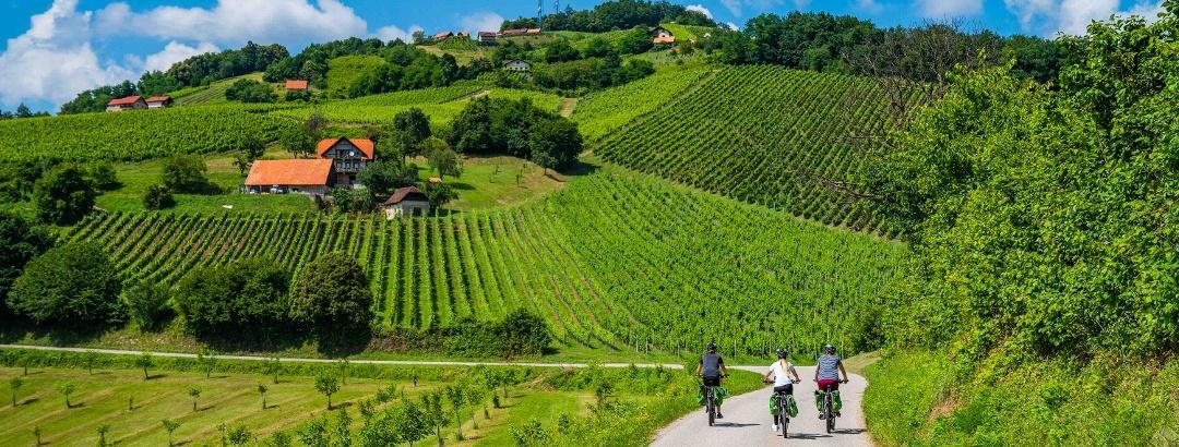 Radfahren in Čatež und Posavje