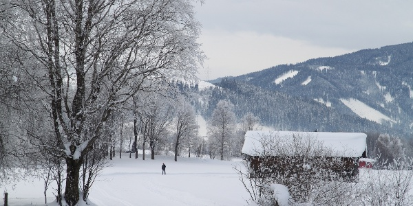 Langlauf Radstadt - Untertauern