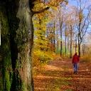 Profielfoto van: Tourismus VG Lauterecken-Wolfstein