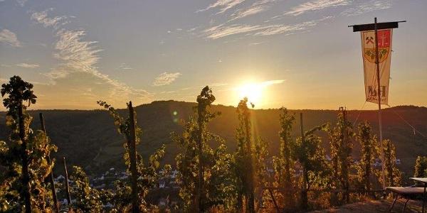 """Stein & Wein Panorama am Aussichtspunkt """"Weinausschank"""""""