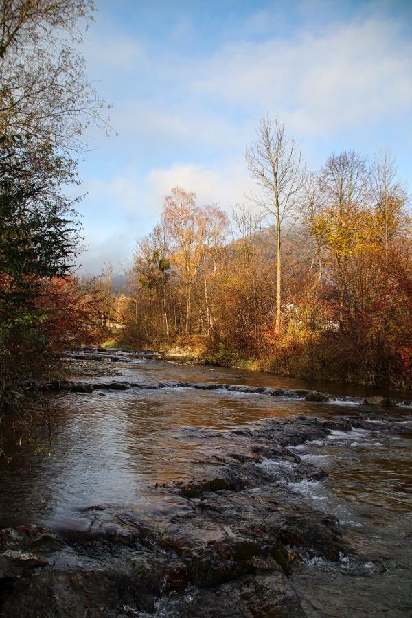 Auerbach im Herbst