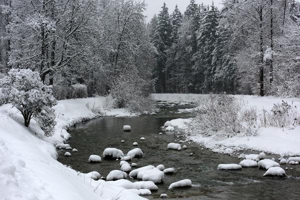 Auerbach im Winter