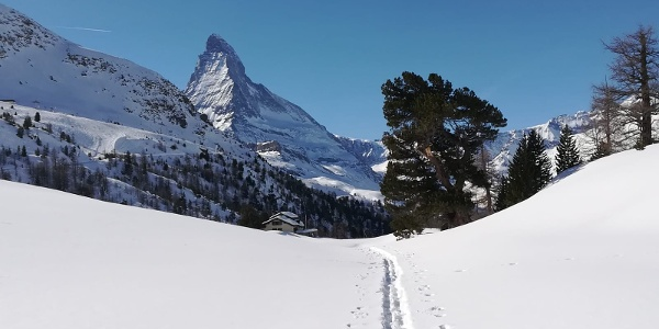 Winter Wonder Trail: Its name says it all.