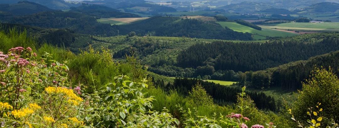 Herrliche Aussicht im Sauerland
