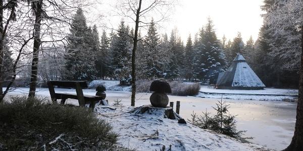 Winter am Meiler 2