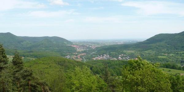 Ausblick auf die Rheinebene