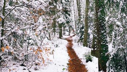 ...bei schnee