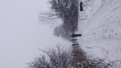 út a ködbe