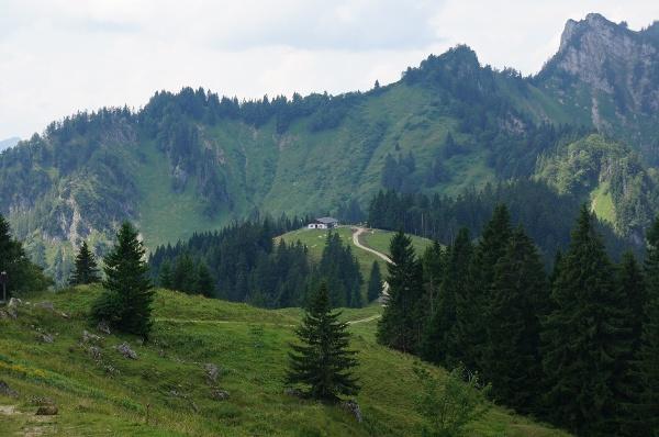 Blick zur Piesenhausener Hochalm