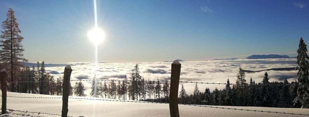 Saualpe Winter - Weg ÖAV Nr. 334