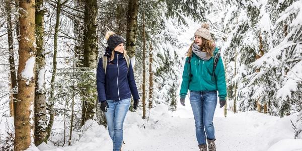 Hochschwarzwlad Tourismus, Winterwanderung, Schlidenfahrt