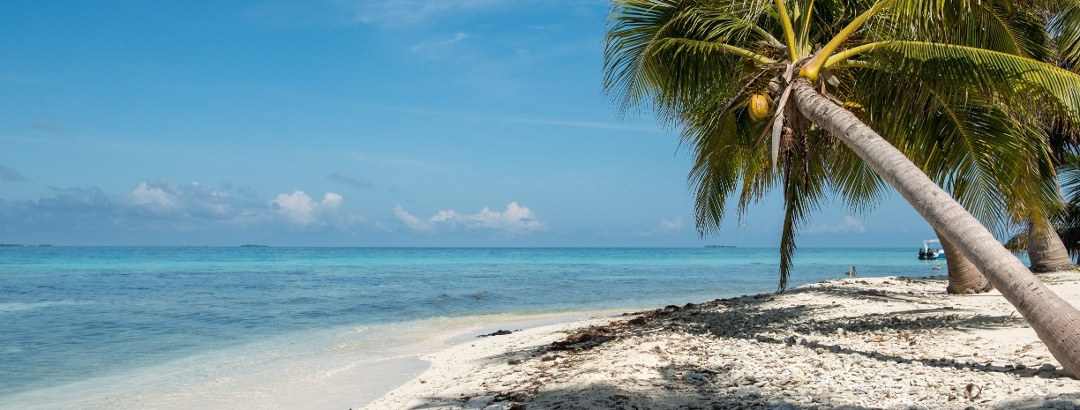 Tropical beach on the island Laughing Bird Cay