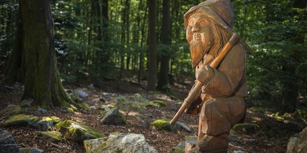 Willy Wurzel der Waldmeister des Zauberwalds