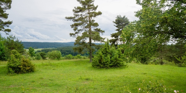 Im Naturschutzgebiet Kapf erlebt man die Gäulandschaft mit all ihren Facetten