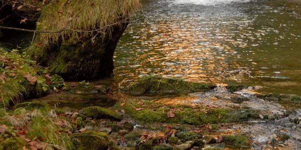 Naturdenkmal Stiegengraben