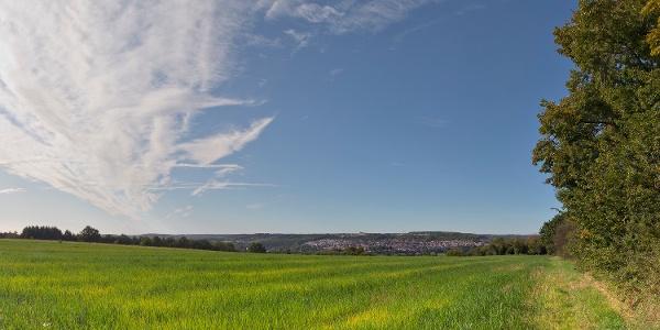 Blick nach Pliezhausen über weite Felder und Futterwiesen