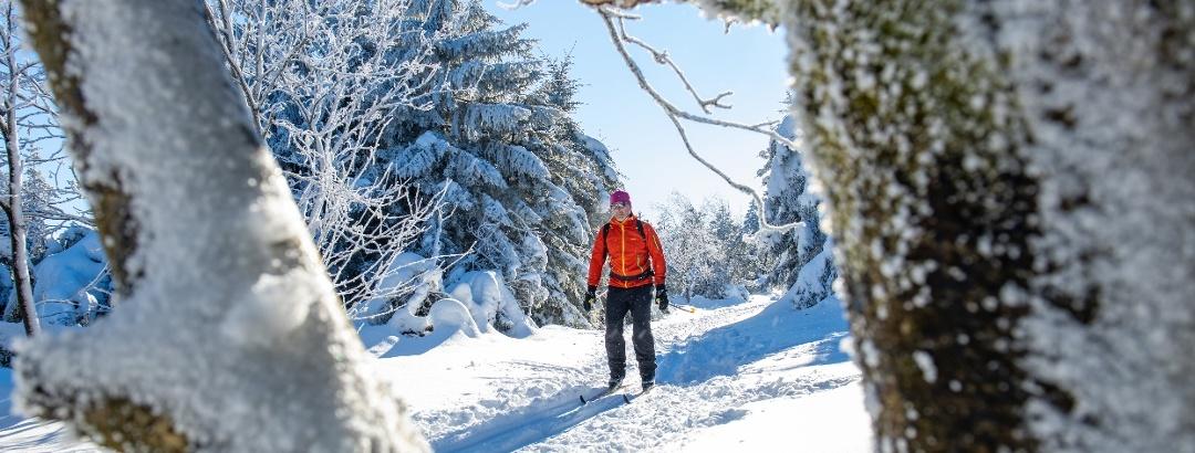 Langlaufsport  in der Urlaubsregion Altenberg