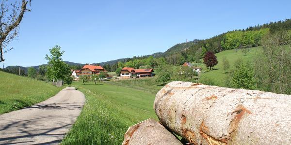 Blick zum Hotel Breitenberg und Buchkopfturm